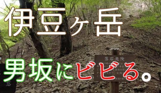 【動画を更新しました】伊豆ケ岳の男坂にビビる。【埼玉の山】